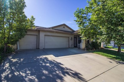 292 Vardon Court, Ione, CA 95640 - MLS#: 18042252