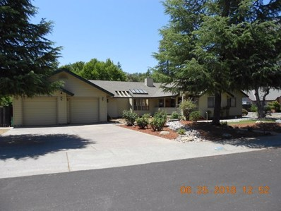 4101 Meadow Park Court, Auburn, CA 95602 - MLS#: 18042889