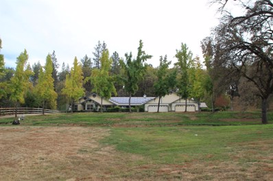 24881 Table Meadow Road, Auburn, CA 95602 - MLS#: 18043140