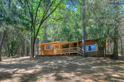 3032 Talking Mountain Trail, Cool, CA 95614 - MLS#: 18043294