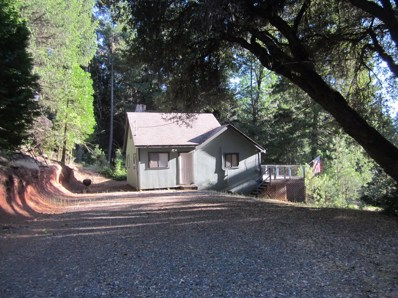5037 Old Mine Road, Grizzly Flats, CA 95636 - MLS#: 18043601