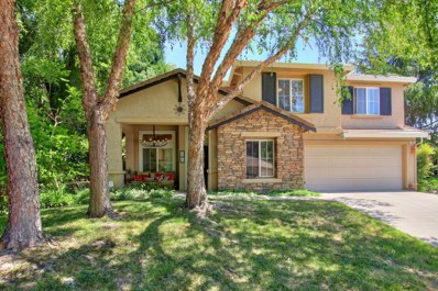 22 Kittiwake Court, Sacramento, CA 95833 - MLS#: 18043683