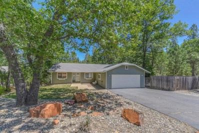 12920 Wildwood Court, Pine Grove, CA 95665 - MLS#: 18043850