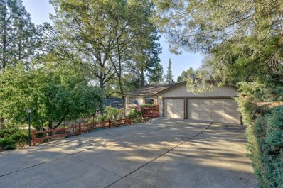 11185 Bobolink Way, Auburn, CA 95602 - MLS#: 18043974