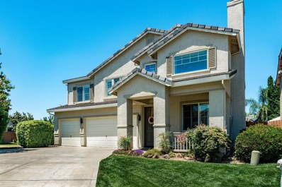 9738 River Dolphin, Elk Grove, CA 95757 - MLS#: 18044021