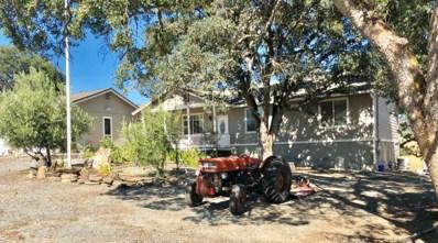 202 Ronald Reagan, Valley Springs, CA 95252 - MLS#: 18044110