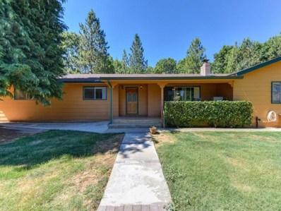 23355 Westpoint Pioneer Road, West Point, CA 95255 - MLS#: 18044571
