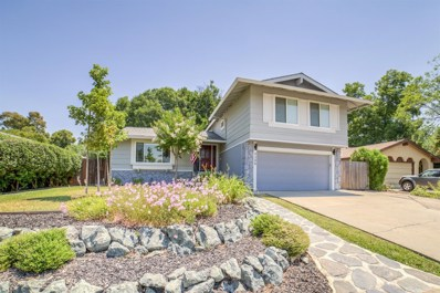 9388 Premier Way, Sacramento, CA 95826 - MLS#: 18044814