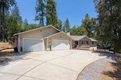 11701 Clinton Bar Road, Pine Grove, CA 95665 - MLS#: 18044985