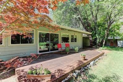 13984 Dalmatian Drive, Grass Valley, CA 95945 - MLS#: 18045161