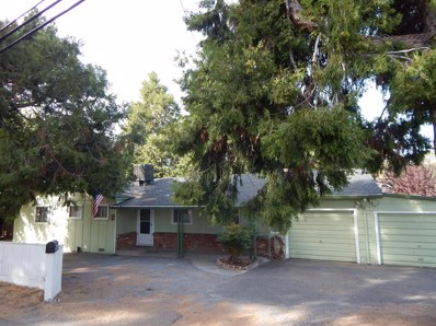 9316 Mosquito Road, Placerville, CA 95667 - MLS#: 18045179