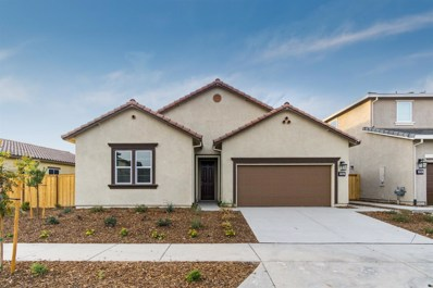 224 Olivadi Way, Sacramento, CA 95834 - MLS#: 18045352