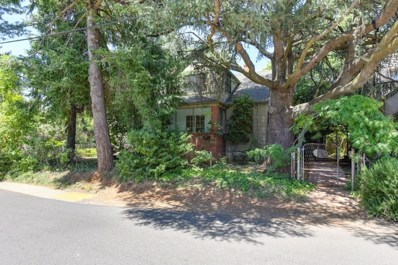 10401 Alta Street, Grass Valley, CA 95945 - MLS#: 18045467