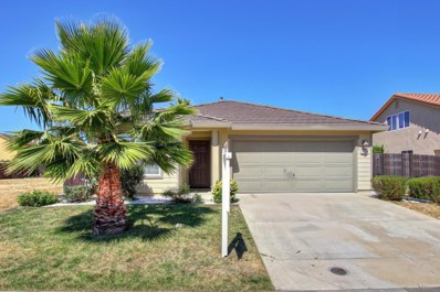 9124 Pebble Field Way, Sacramento, CA 95829 - MLS#: 18045845