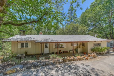 14377 Pine Cone Lane, Pine Grove, CA 95665 - MLS#: 18045850