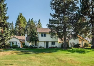 2902 Pasatiempo Place, Sacramento, CA 95833 - MLS#: 18046109
