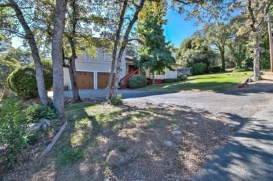 335 Terken Place, Auburn, CA 95603 - MLS#: 18047231