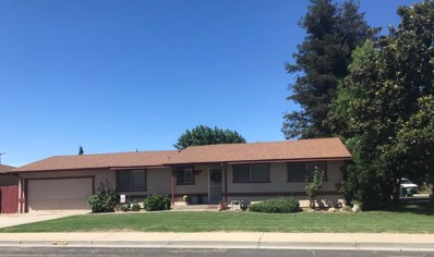 19917 Campbell, Hilmar, CA 95324 - MLS#: 18048042