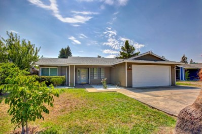 3786 Shining Star Drive, Sacramento, CA 95823 - MLS#: 18048235