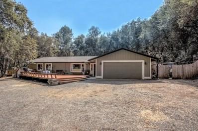 181 Pine Tree Circle, Pilot Hill, CA 95664 - MLS#: 18048409
