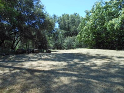 4261  Downing Lane, Diamond Springs, CA 95619 - MLS#: 18048492