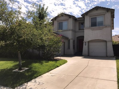 9876 Burrowing Owl Way, Elk Grove, CA 95757 - MLS#: 18048802