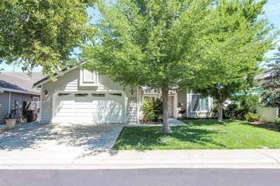 9227 Summer Tea Way, Elk Grove, CA 95624 - MLS#: 18049289