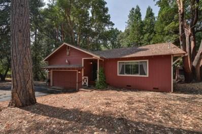 23399 Valley View Drive, Pioneer, CA 95666 - MLS#: 18049662