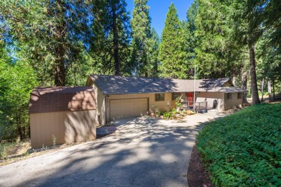 5019 Gold Crest Court, Camino, CA 95709 - MLS#: 18049684