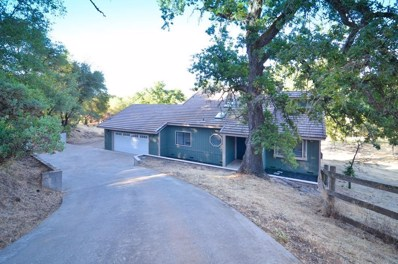5021 Deerwood Drive, Shingle Springs, CA 95682 - MLS#: 18049788