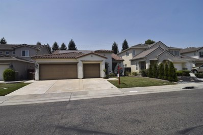 9228 Trout Way, Elk Grove, CA 95624 - MLS#: 18050202