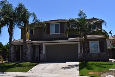 10087 Pinto Ranch Ct, Elk Grove, CA 95624 - MLS#: 18050575