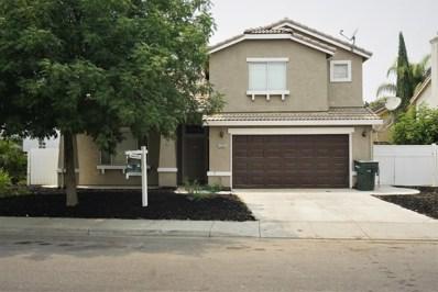 1203 Duck Blind, Newman, CA 95360 - MLS#: 18050636