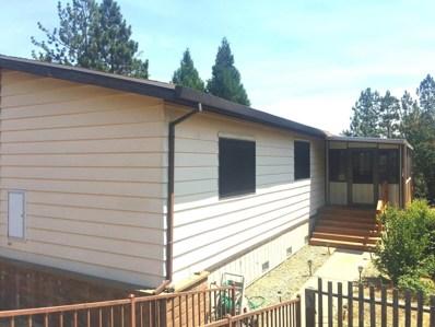 14074 Irishtown Road UNIT 61, Pine Grove, CA 95665 - MLS#: 18051152