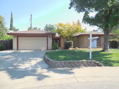 9109 Green Oak Court, Fair Oaks, CA 95628 - MLS#: 18051356