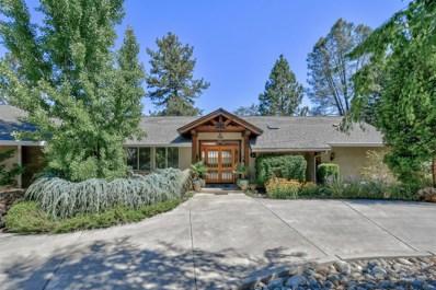 10601 Mountain View Court, Grass Valley, CA 95949 - MLS#: 18051968