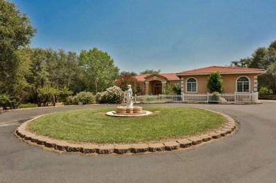 5361 Stampede Lane, Shingle Springs, CA 95682 - MLS#: 18052083