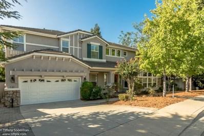 11004 Blue Wing Place, Auburn, CA 95603 - MLS#: 18052408