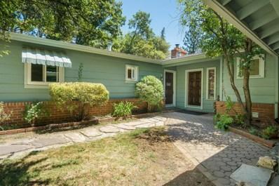 163 Hillside Drive, Applegate, CA 95703 - MLS#: 18052409