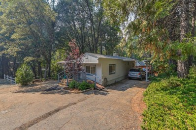 20371 Highway 88 UNIT 7, Pine Grove, CA 95665 - MLS#: 18052561