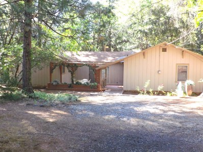 6016 Sly Park Road, Placerville, CA 95667 - MLS#: 18052751