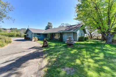 10280 Pacific Court, Plymouth, CA 95669 - MLS#: 18053110