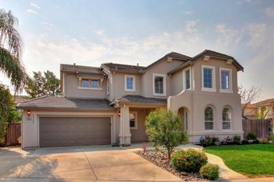 9453 Callisto Court, Elk Grove, CA 95624 - MLS#: 18053211