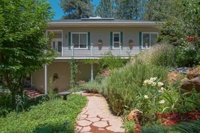 14174 Warren Drive, Grass Valley, CA 95949 - MLS#: 18053248