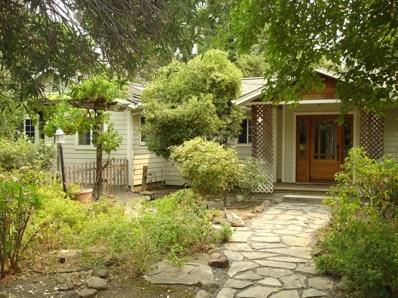 25107 Central Way, Davis, CA 95616 - MLS#: 18053430
