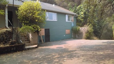 700 Forni Road, Placerville, CA 95667 - MLS#: 18053721