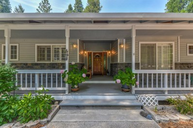 19125 E Pine Drive, Pioneer, CA 95666 - MLS#: 18053950