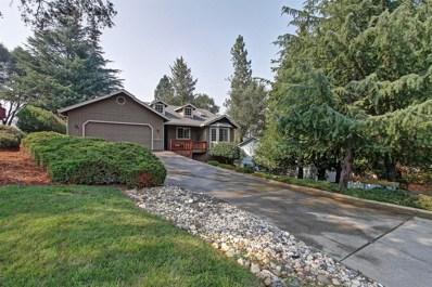 13337 Torrey Pines Drive, Auburn, CA 95602 - MLS#: 18053991