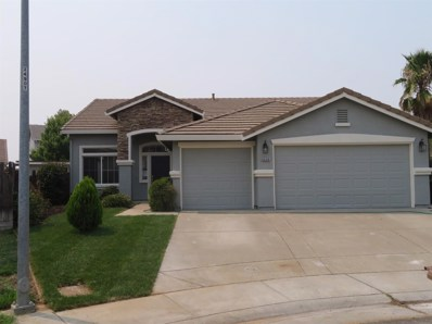 9328 Feather Falls Court, Elk Grove, CA 95624 - MLS#: 18054015
