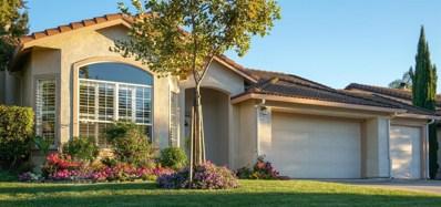 10117 River Falls Circle, Stockton, CA 95209 - MLS#: 18054342